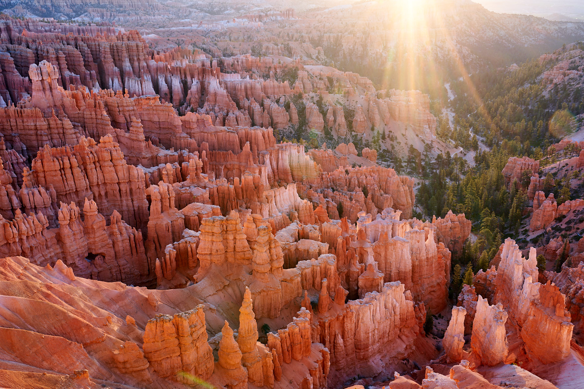 Bryce Morning Glow