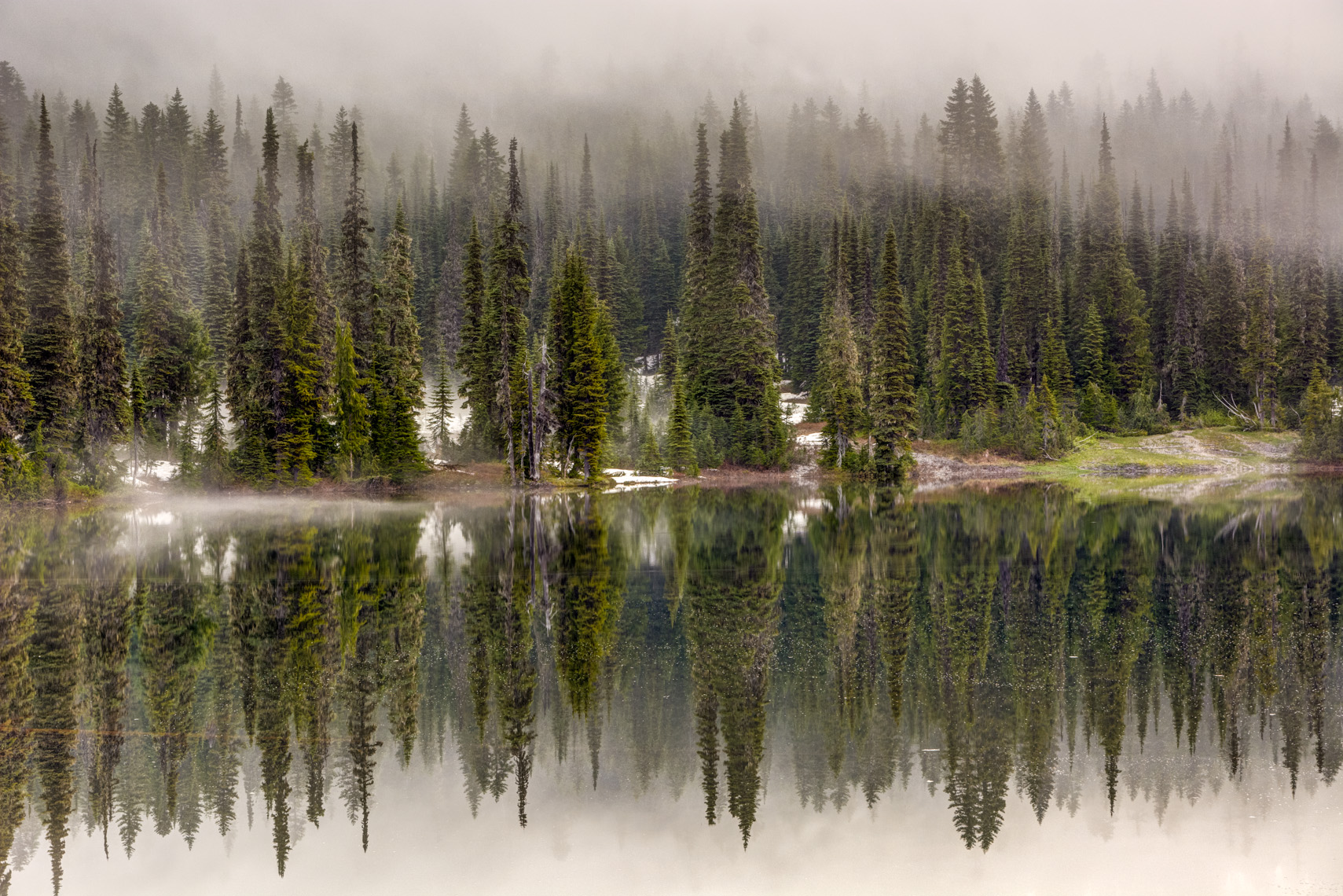 Foggy Reflections